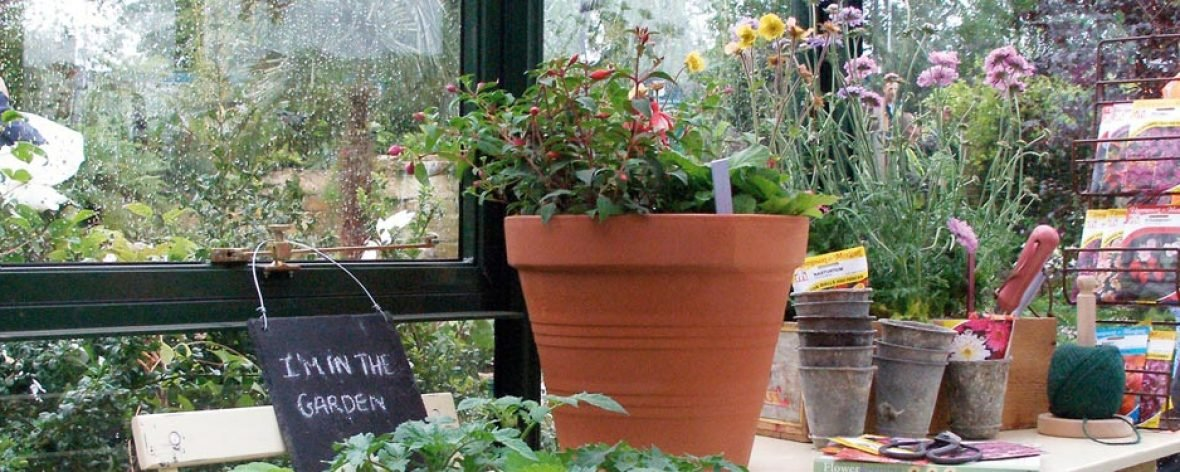 Plant Pots Inside The Hartley Botanic Tradition 6 Greenhouse