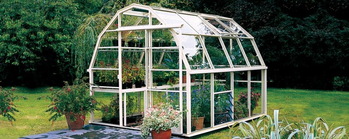 White Wisley greenhouse from the Hartley Botanic small greenhouse range